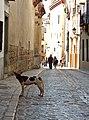 Granada (25475828364).jpg
