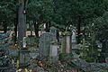 Graveyard in Bonn 2.jpg