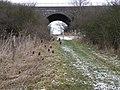 Green lane Bridge - geograph.org.uk - 1705175.jpg