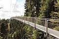 Hängebrücke Wildline Bad Wildbad.jpg