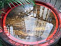 HK Sheung Wan Lok Ku Road rain Wooden barrel view Curios Court June-2012.JPG