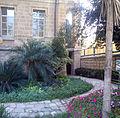 Hadassah 1.jpg