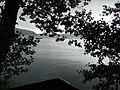 Hald sø - panoramio.jpg