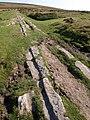 Haytor Granite Tramway - geograph.org.uk - 1498121.jpg