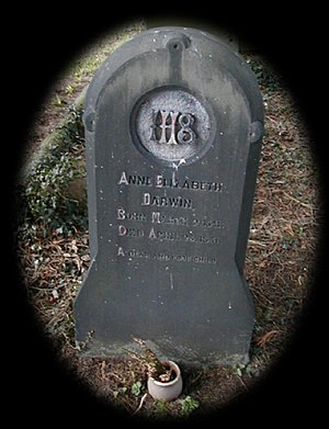 Anne Darwin - Annie's grave in Great Malvern