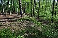 Heidenschloss-Weiherberg-DSC 6231.jpg