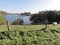 Heijen (Gennep) Zuidereiland, Oude Maasarm met afsluitende dijk.jpg