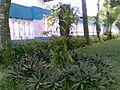 Helmi Rahim - panoramio.jpg
