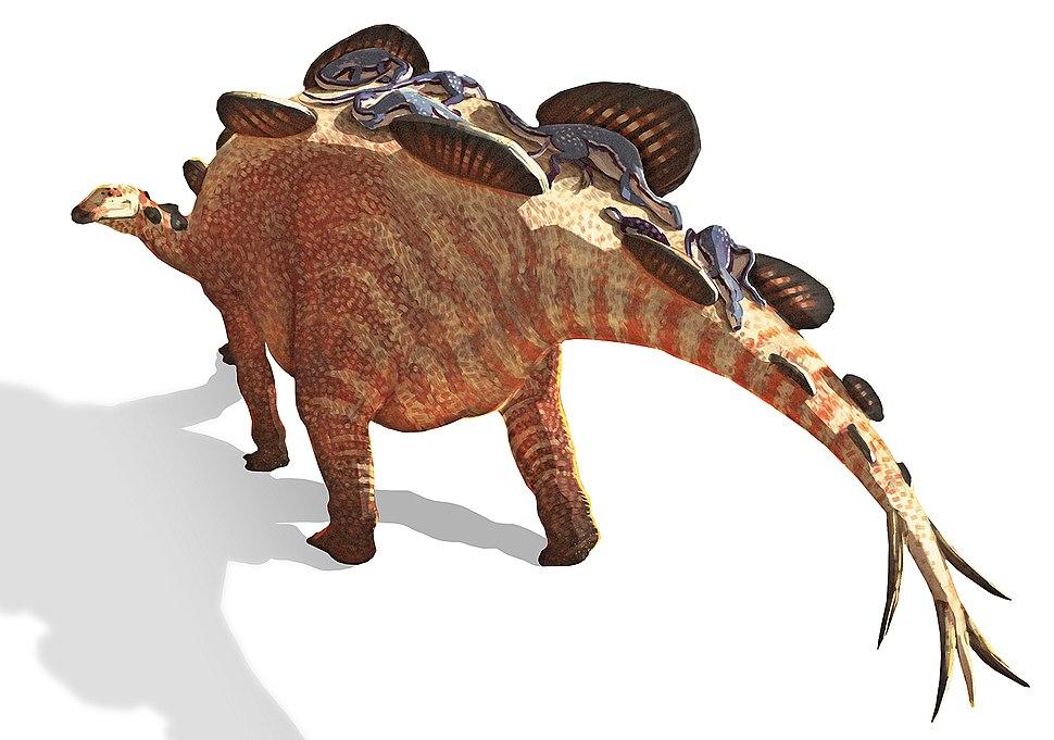Hesperosaurus & Othnielia no background