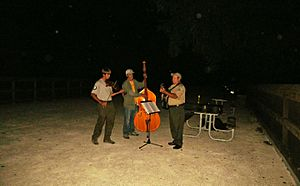 Music session - An outdoor jam session with acoustic instruments.