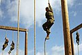 High Rope (8567960215).jpg