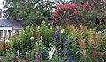 Hillwood Gardens in July (19802018125).jpg