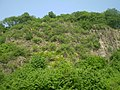 Himmerich Steilhang.jpg