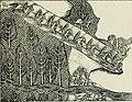 History of Egypt, Chaldea, Syria, Babylonia and Assyria (1903) (14576793670).jpg