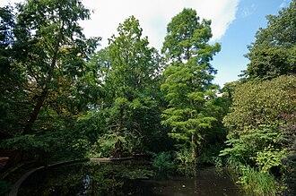 Holland Park - Image: Holland park august 09
