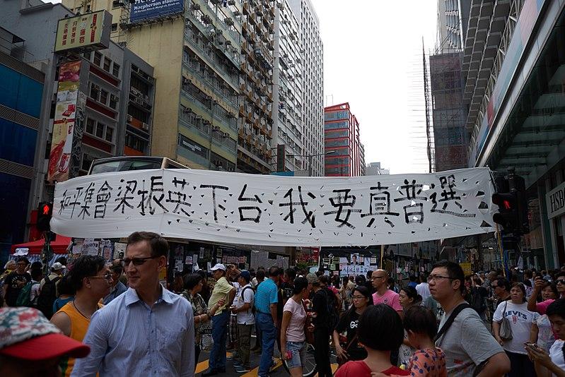 File:Hong Kong protests (15676379511).jpg