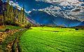 Hopper Valley.jpg