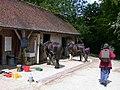 Horse maintenance - geograph.org.uk - 814328.jpg
