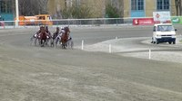 Файл:Horse race in Vienna.webm