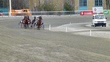 Datei:Horse race in Vienna.webm