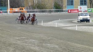 File:Horse race in Vienna.webm