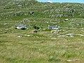 Houses at Geocrab - geograph.org.uk - 1390680.jpg