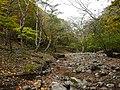 Ibarakawacho, Higashiomi, Shiga Prefecture 527-0216, Japan - panoramio (33).jpg