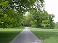 In Melbury Park - geograph.org.uk - 438418.jpg