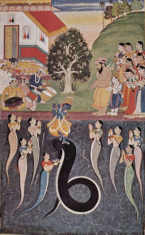 Yamuna in Hinduism - Krishna defeats Kaliya, dwelling in the Yamuna.