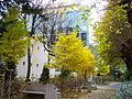 Institut Curie - centre de recherche biologie du développement et cancer.JPG