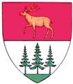 Interbelic Storojinet County CoA.png