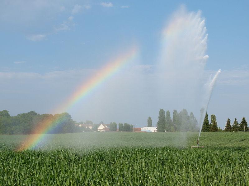 Arroseur pour l'irrigation du maïs durant la canicule du 1er juillet 2015, dans l'Yonne