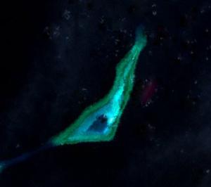 Irving Reef - Irving Reef