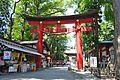 Isasumi-jinja torii.JPG