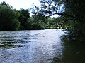 Jagstmündung in den Neckar.JPG