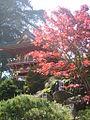 Japanese Garden SF2.jpg