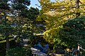 Japanese Tea Garden San Francisco December 2016 005.jpg