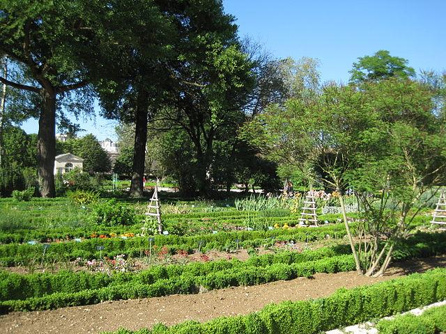 Fichier jardin botanique dijon wikip dia for Jardin l encyclopedie