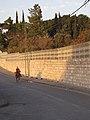 Jerusalem 2009 (4159150816).jpg