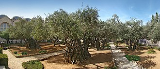 Clarel - Gethsemane.