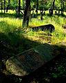 Jewish cemetery Otwock 10760734.jpg