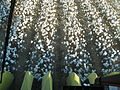 John Deere cotton harvester kv09.jpg