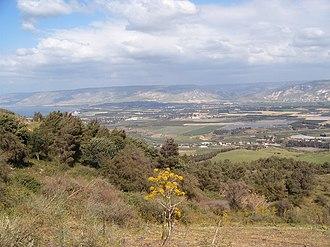 Agriculture in Jordan - Jordan Valley