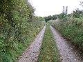Jubilee Trail near Tarrant Gunville - geograph.org.uk - 1027446.jpg