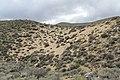 Jumbo Grade Trail - panoramio (67).jpg