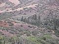 Karaboğaz - panoramio.jpg