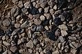 Karmir blur obsidian.jpg