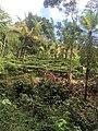 Kegalle, Sri Lanka - panoramio (7).jpg