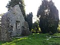 Killowen (St. Mary's) Church Ruins - panoramio (1).jpg