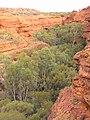 Kings Canyon, Australia, 2004 - panoramio (6).jpg